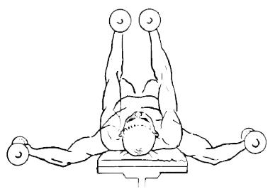 Разводка гантелей  упражнение на грудь