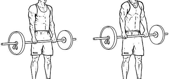 Упражнение шраги - техника выполнения